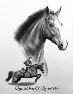 Collage Springpferd Pferdeportrait