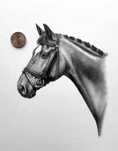 Pferdeportrait kleines Format