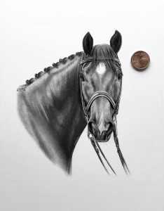 Pferdezeichnung kleines Format