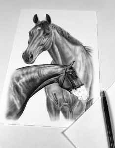 Pferdezeichnung Komposition