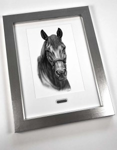Horse Drawing Frame