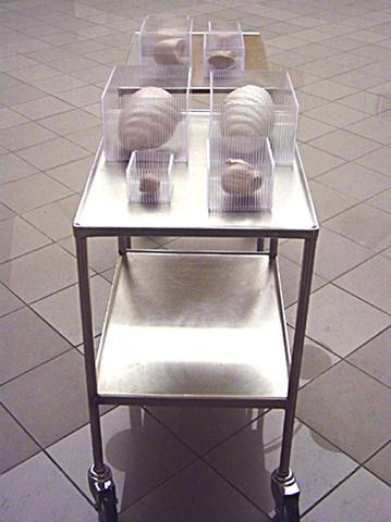 organ TransferII,metalbord