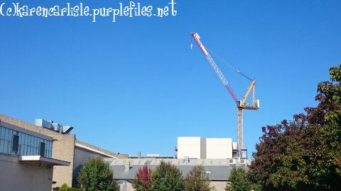 150106 crane above WEA