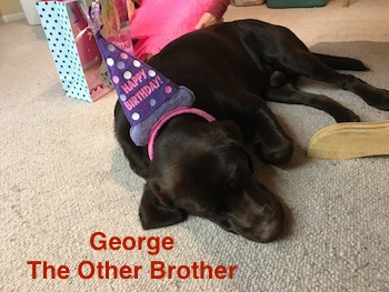 Susie Hernandez Costa Mesa CA George Souther California Lab