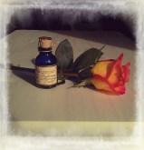blouseybrown_2012-10-19