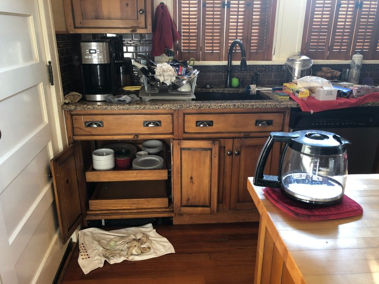 Kitchen in disarray.
