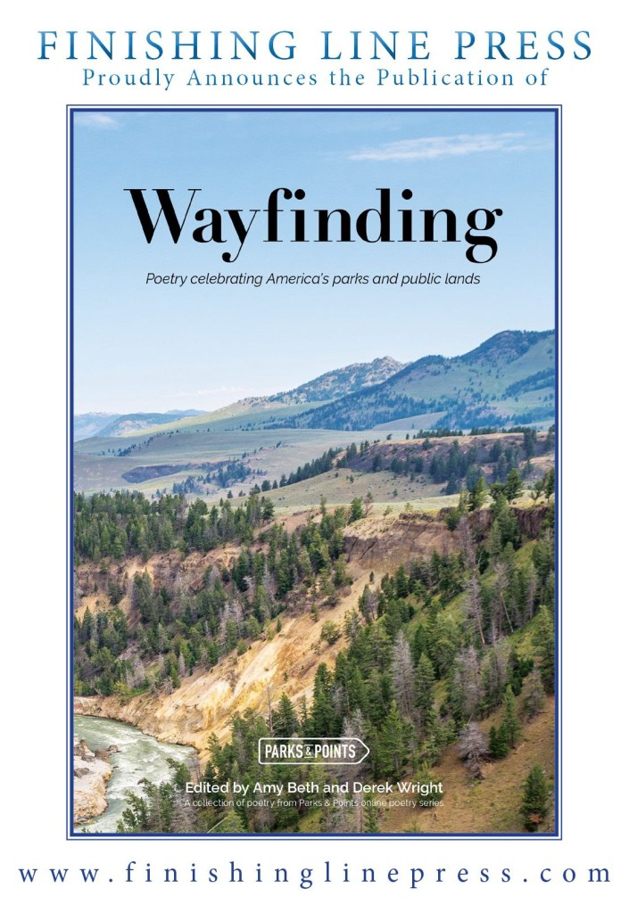the cover of WAYFINDING, a poetry anthology