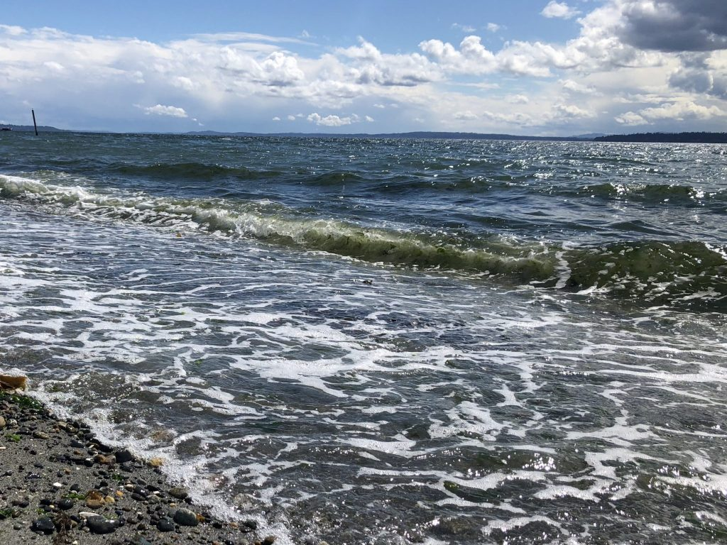 Beach Water, Struggling Not to Wilt in Summer: Margaret Atwood, Karen Hugg, https://karenhugg.com/2018/07/22/water #water #beach #inspiration #MargaretAtwood #summer #heat