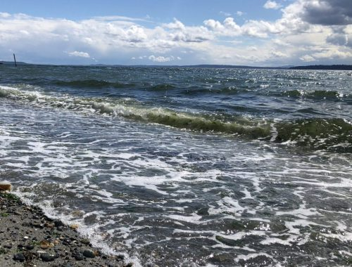 Beach Water, Struggling Not to Wilt in Summer: Margaret Atwood, Karen Hugg, https://karenhugg.com/2018/07/22/water #water #beach #inspiration #MargaretAtwood #summer #heat