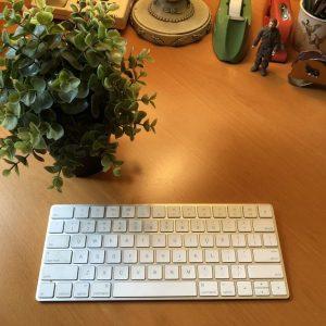keyboard and plant, 5 Reasons Why NaNoWriMo Is Not for Me, https://karenhugg.com/2018/10/29/nanowrimo-is-not-for-me, Karen Hugg #nanowrimo #NationalNovelWritingMonth #books #novel #reasonsnottodonanowrimo