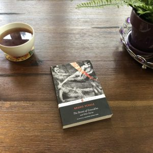 Bruno Schulz Imagines an Insane, Ecstatic World, Karen Hugg, https://karenhugg.com/2019/01/23/bruno-schulz #BrunoSchulz #StreetofCrocodiles #Poland #writers #Polish #novels #books