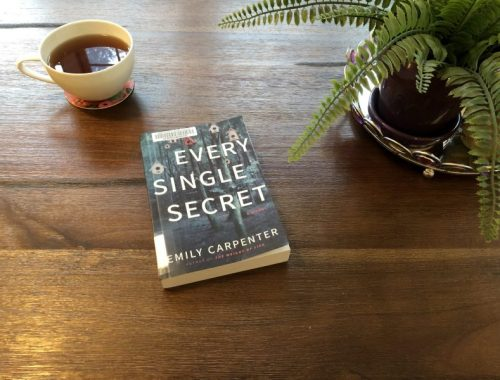 Every Single Secret by Emily Carpenter, book cover, a book review by Karen Hugg, https://karenhugg.com/2018/10/02/every-single-secret/ #books #EverySingleSecret #EmilyCarpenter #novels #bookreviews