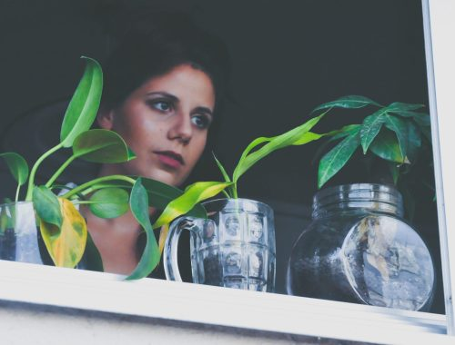 Woman Looking at Plants, Is Taking a Plant Break Really That Important? Karen Hugg, https://karenhugg.com/2021/02/14/taking-a-break/(opens in a new tab) #plants #stress #destressing #takingabreak #DanielLevitin #attentionrestoration #meditation #fivesteps #biophilia #dailystressreleaf