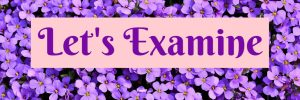 The Fruit of the Spirit Bible Study Week 20: Sabbath Let's Examine by Karen Jurgens