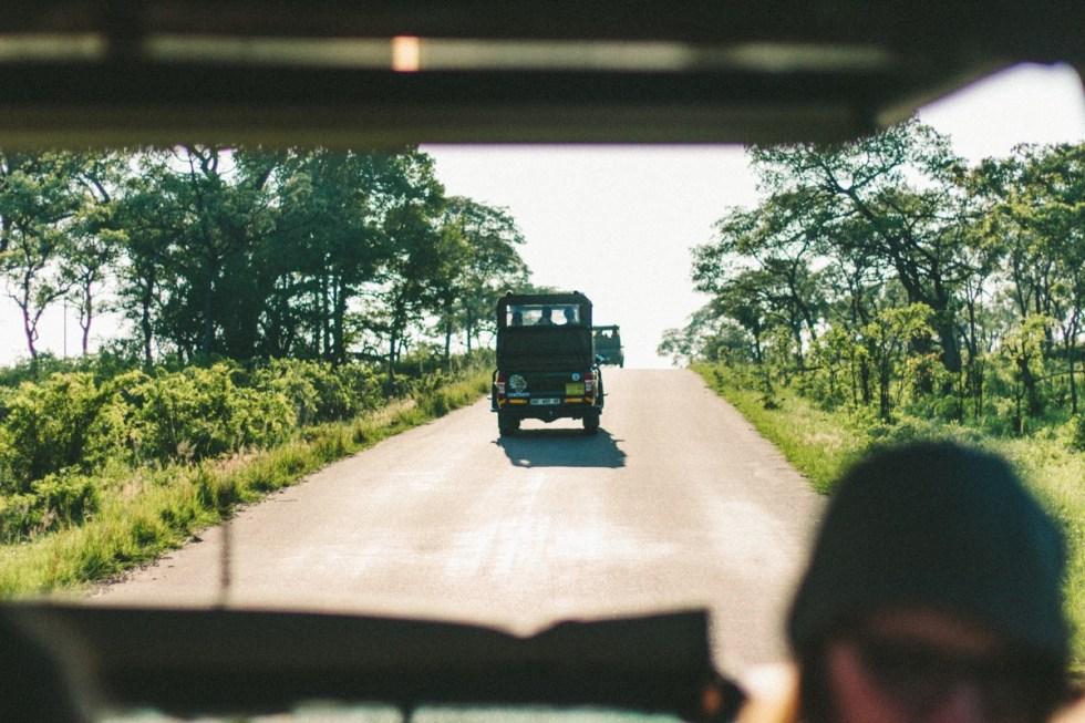 south-africa-kruger-national-park-1