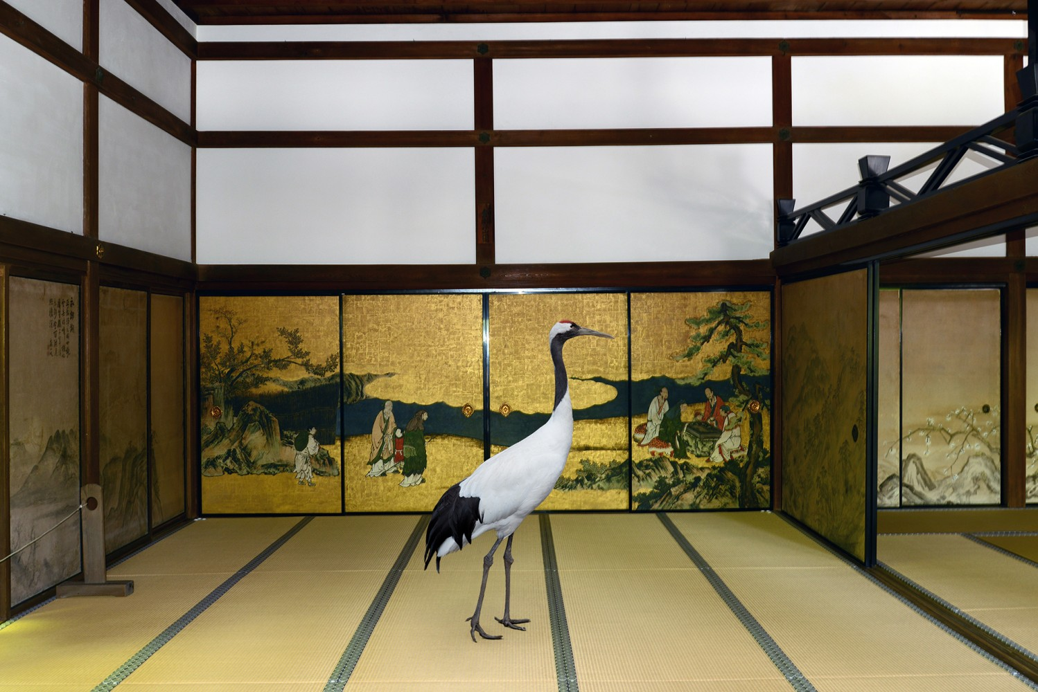 https://i2.wp.com/karenknorr.com/wp-content/uploads/2015/02/3.Sarus-in-Temple-1498x1000.jpg