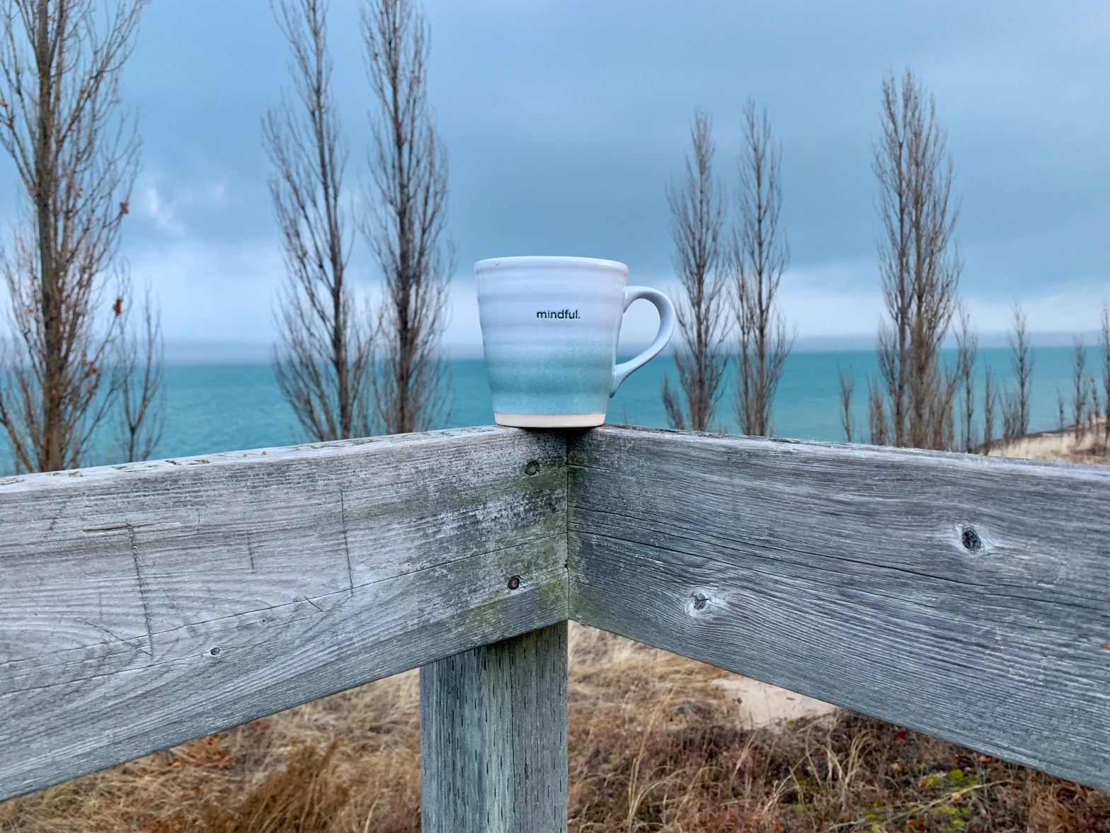 mug with the word mindful against water and trees background