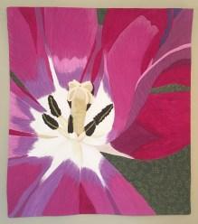 Sandy's Tulip : 30x34