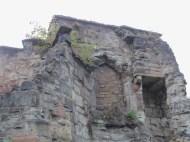 newarke houses (9)