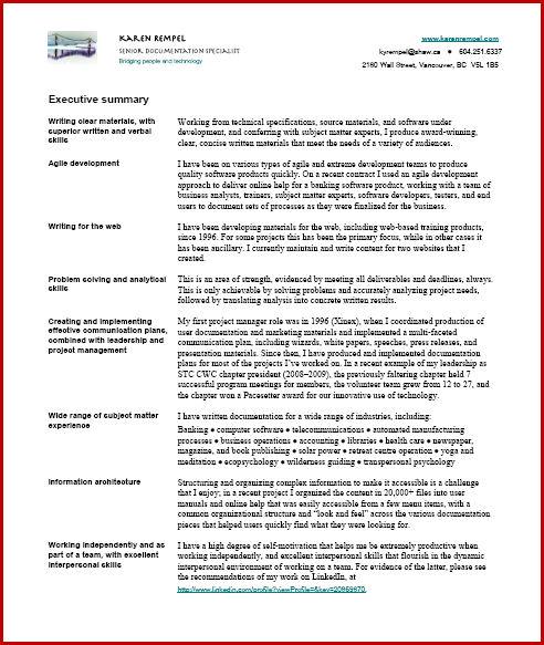 It Executive Resume Summary. Executive Summary Template Sample