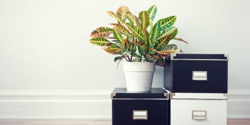 Get Organized with a Spring Cleaning at Work