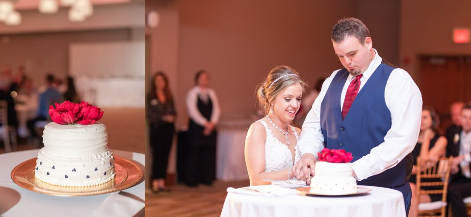 Cutting the cake at iHotel winter wedding in Champaign, Illinois