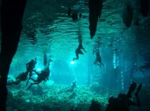 1_-Swimmers-and-snorkelers-exploring-a-Mexican-cenote_-Photo-by-gobluetours_com_3