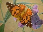 Butterfly step 3 © 2014 Karen A Johnson