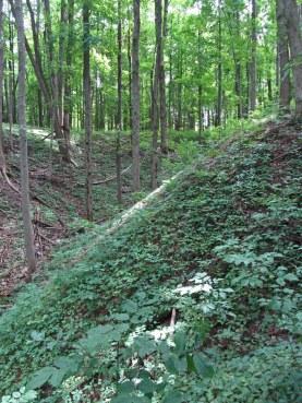 KNC hiking trail © 2014 Karen A. Johnson