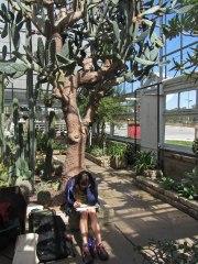 Julie under a giant prickly pear © 2014 Karen A. Johnson