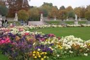 Luxembourg garden flowers © 2014 Karen A. Johnson