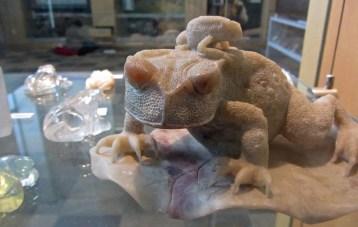 White stone frogs 2 © 2015 Karen A. Johnson