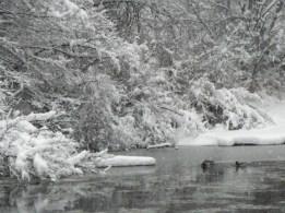 Floating down the river © 2015 Karen A. Johnson