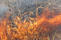 Fire 15 © 2015 Karen A. Johnson