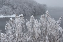 Layers of Frost © 2015 Karen A. Johnson