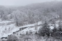 Frost in the valley © 2015 Karen A. Johnson