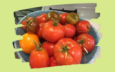 Ah… Tomato Heaven!