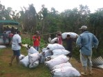 The bags are carried up the hill to await weighing