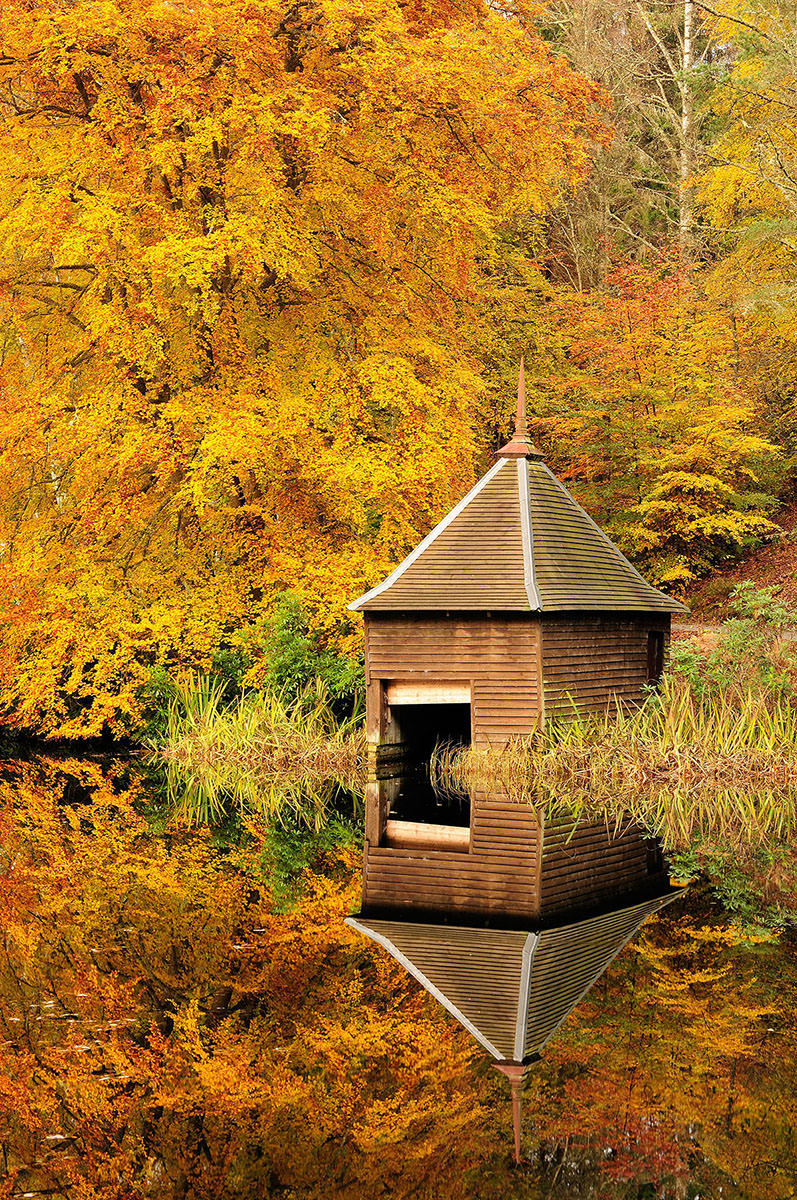 Small wooden boathouse with trees in orange autumn colours behind, perfectly reflected on the surface of water in a lake
