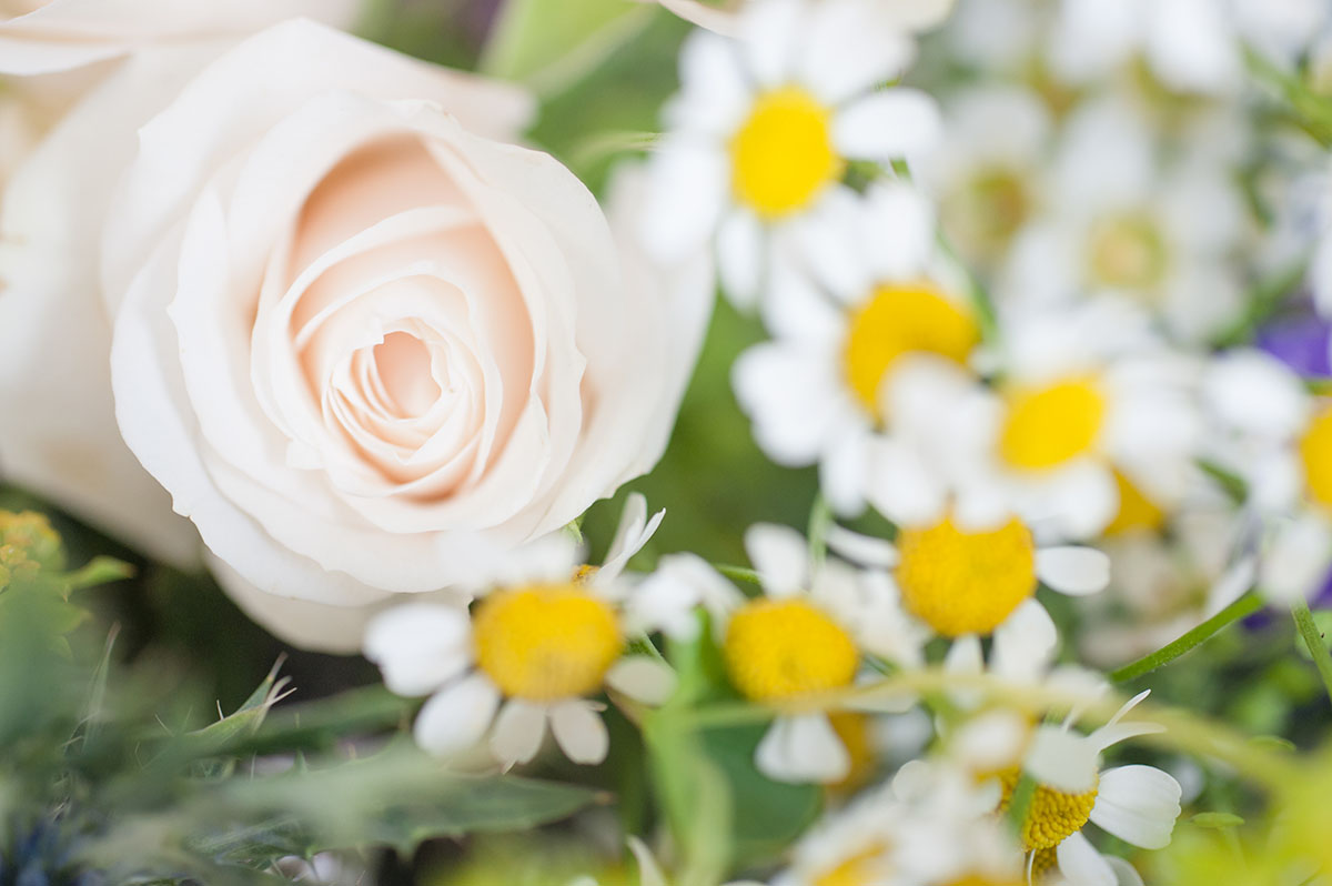Wedding pictures - pale pink rose and yellow and white daisies in a bride's bouquet of flowers