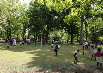 Hooping Herman Park 14