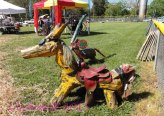 Clyde critter under saddle.