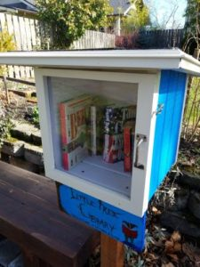 Little Free Library Blue