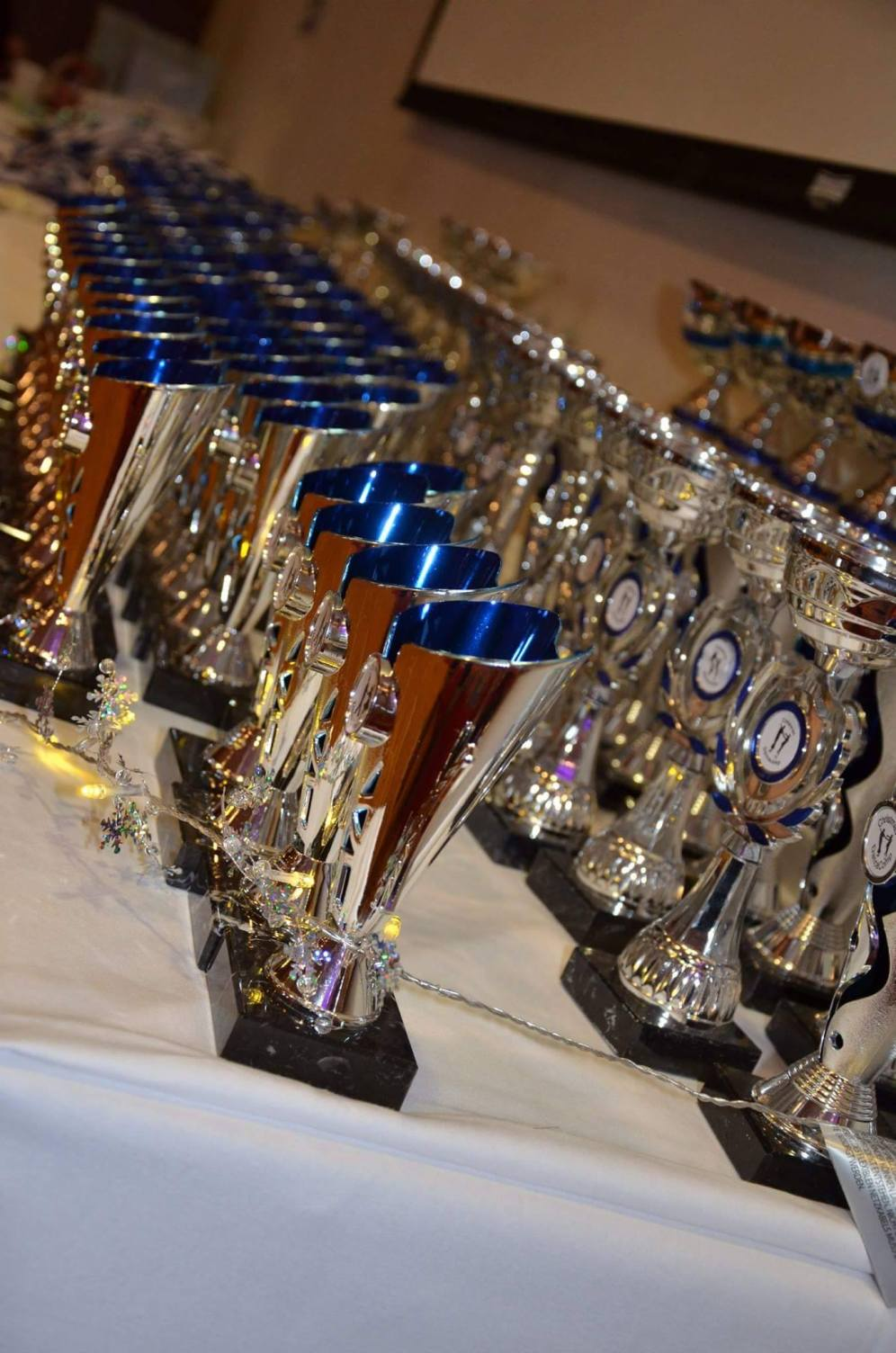 Trophies waiting for new owners !