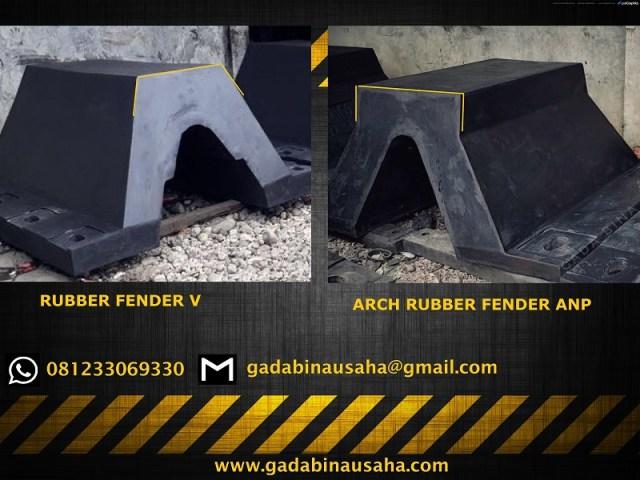 Fender V Arch Fender