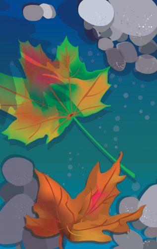 Leaves | Burlodge