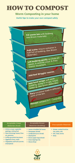 19. Sarah Mortimer: Composting Info Graphic Poster