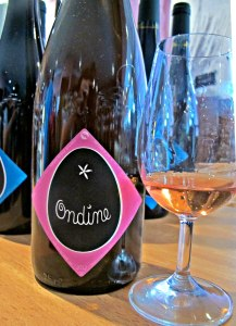 domaine_clos_massotte_pierre_nicolas_french_natural_wine_vin_naturel_nature_biodynamic_biodynamie_ondine