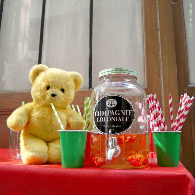 compagnie-coloniale-french-ice-tea-the-francais-rooibos-monsieur-kodak-bear