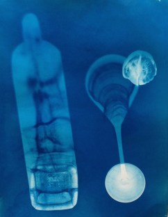 Ghost of Gin and Tonic 35x 28cm cyanotype